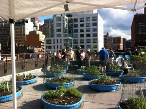 Hell's Kitchen Rooftop Kitchen at Metro Baptist Church